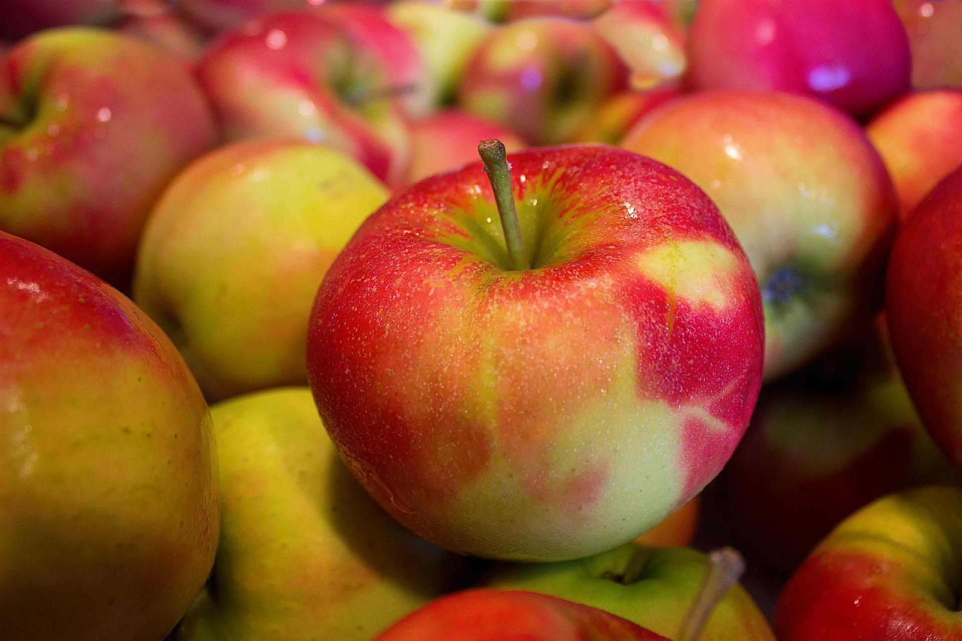 Frugt giver energi